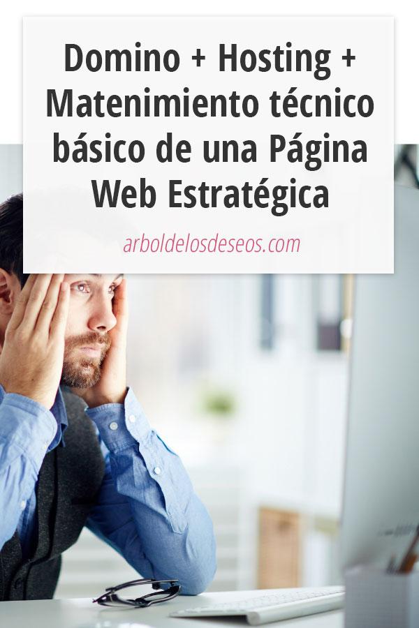Domino + Hosting + Matenimiento técnico básico de una Página Web Estratégica